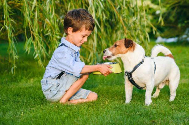 niño pequeño sosteniendo un tazón de perro en las manos para regar su perro mascota sediento - alimentar a tu perro fotografías e imágenes de stock