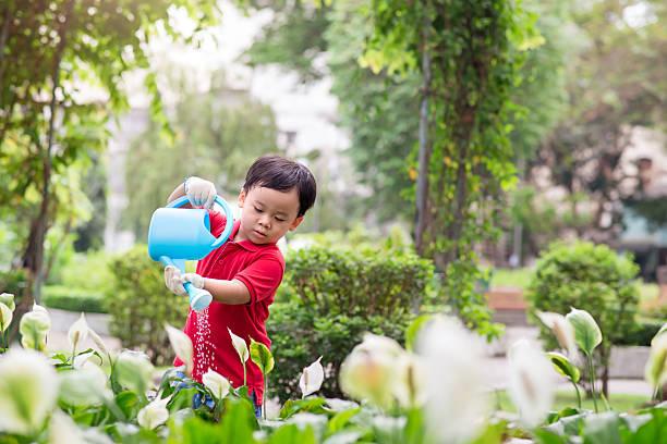 pequeno menino regar plantas - teacher school solo imagens e fotografias de stock