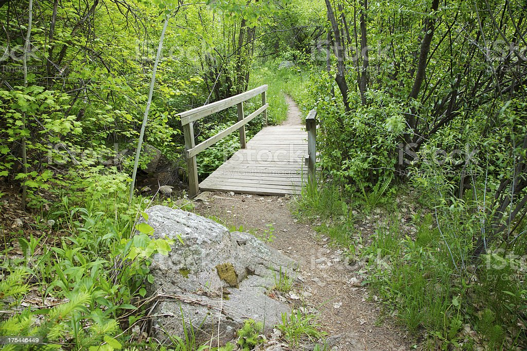 Small Bridge on Hiking Trail royalty-free stock photo