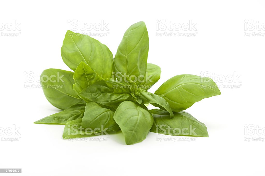 A small bunch of fresh basil against a white background​​​ foto