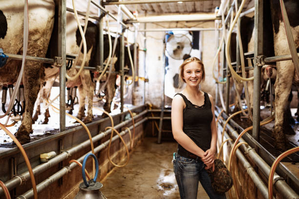 kleinunternehmen in der milchproduktion - landwirtschaftlicher beruf stock-fotos und bilder