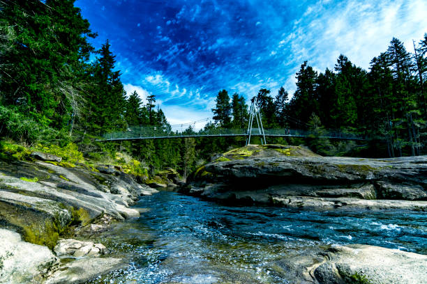 small but beautiful top bridge in rathtrevor beach provincial park, bc canada 3 - provincial park stock photos and pictures
