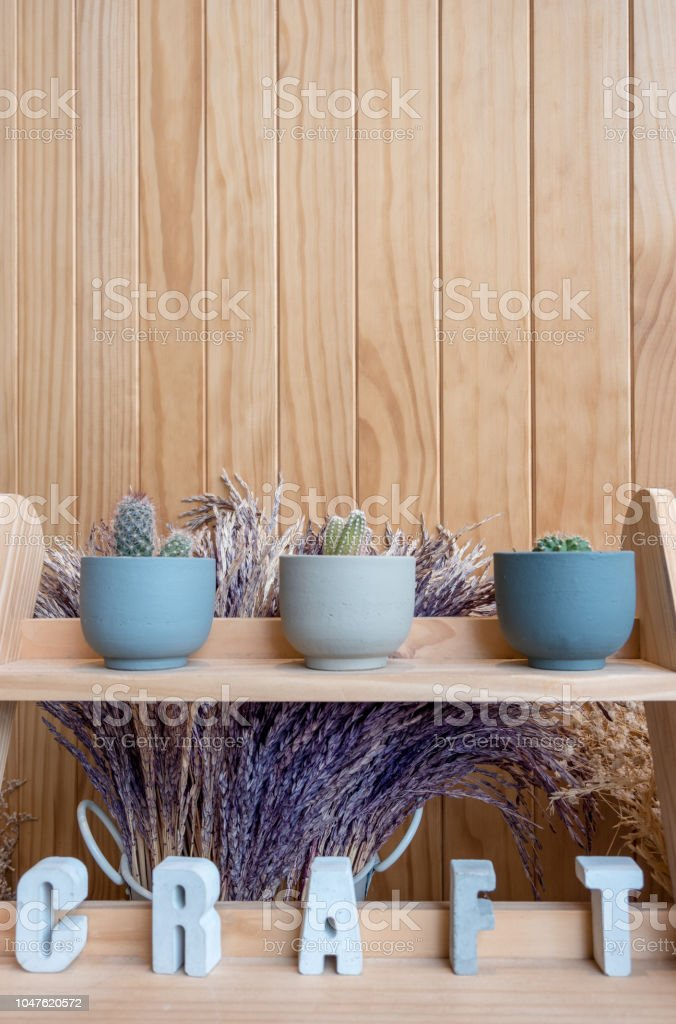 A Small Cactus Pot Displayed On Wooden Shelf In Cafe Shop Stock Photo Download Image Now Istock
