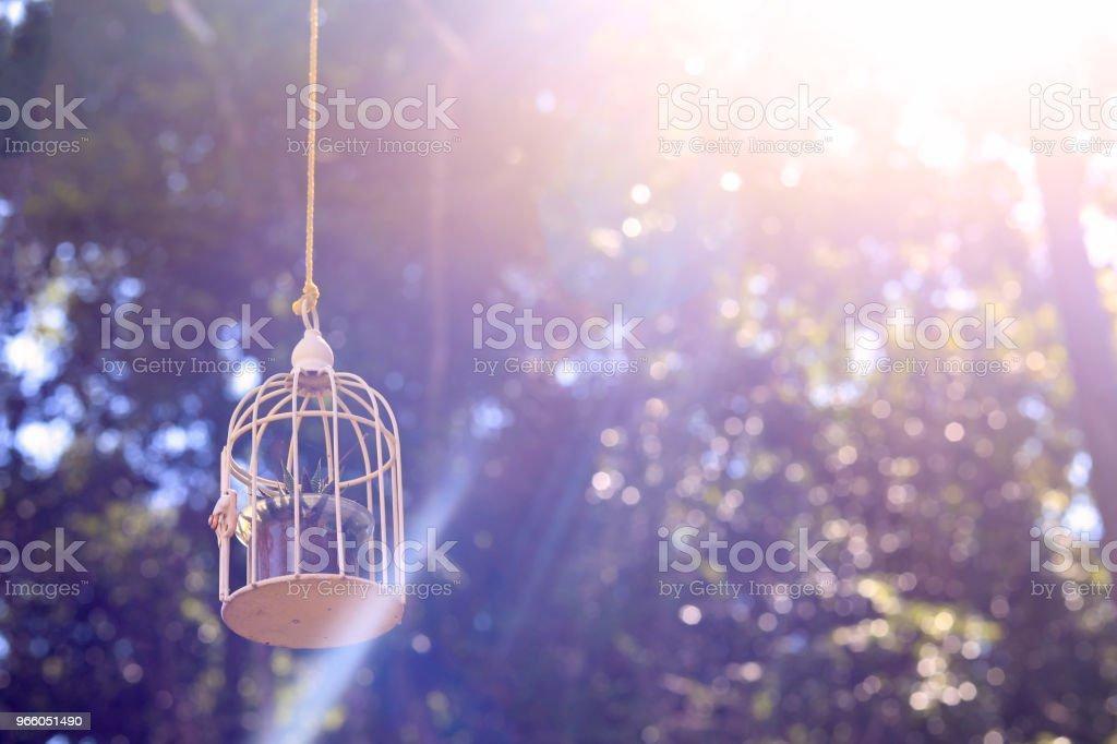 kleinen Käfig mit dem Sonnenlicht auf Hintergrund - Lizenzfrei Alt Stock-Foto