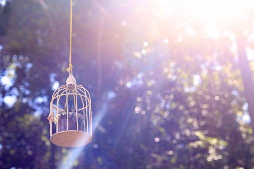 Kleine Kooi Met Het Zonlicht Op Achtergrond Stockfoto en meer beelden van Begrippen