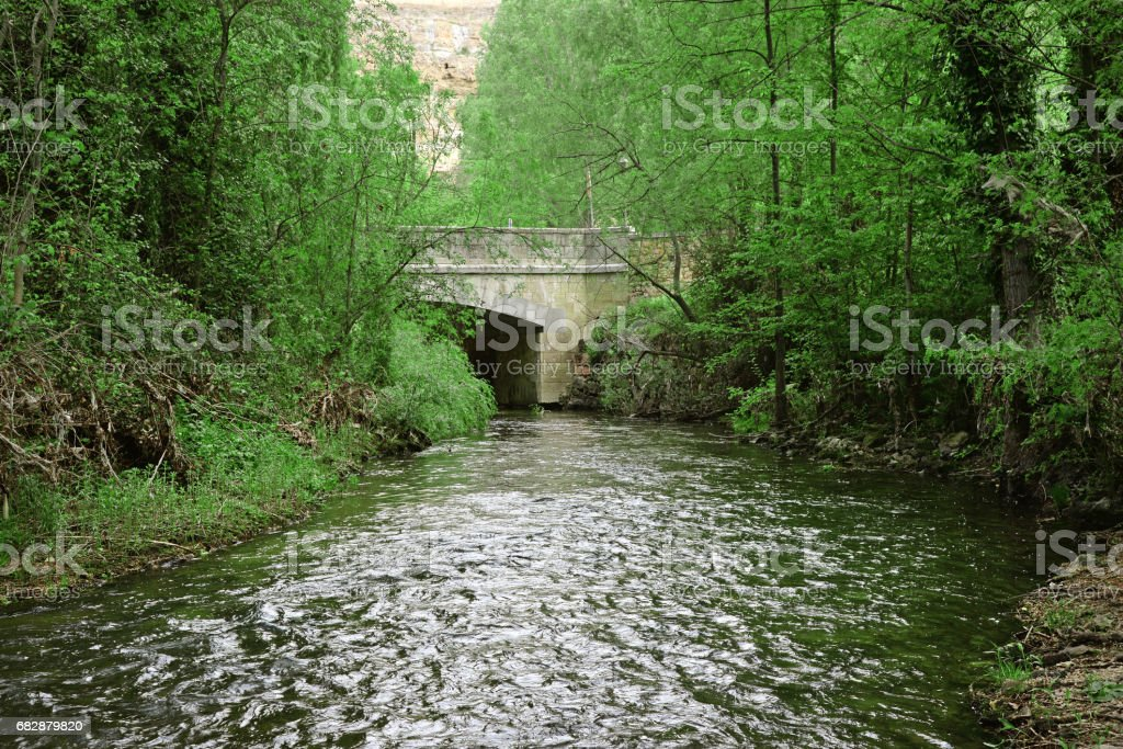 small canal and green garden beside small river stock photo