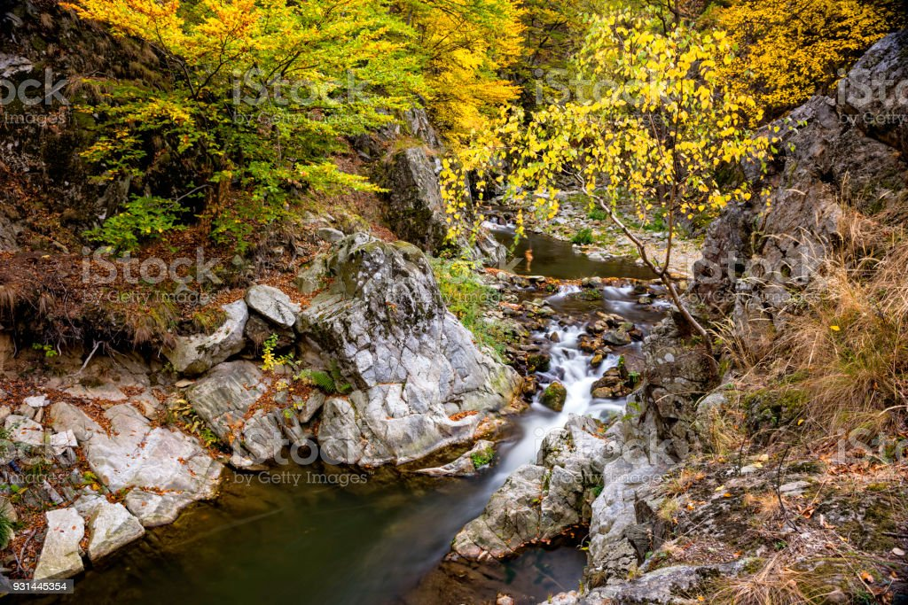 Small canyon with fast river and small watefall during autumn stock photo