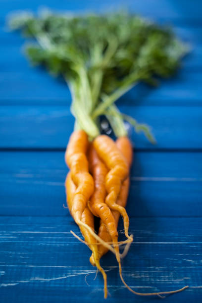 Small Carrots with Greens on Blue stock photo