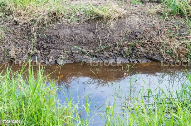Free drainage ditch Images, Pictures, and Royalty-Free Stock Photos -  FreeImages.com
