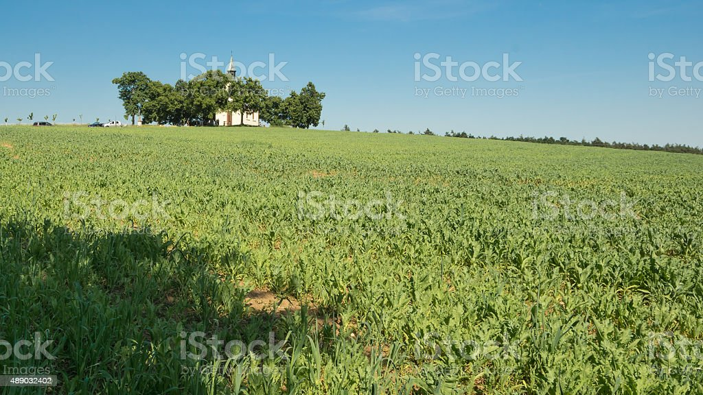 Small chapel with the trees on the hill stock photo