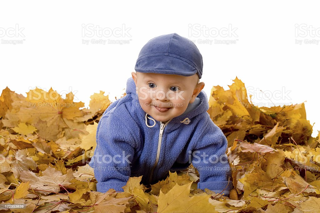 small child in autumn leaves royalty-free stock photo
