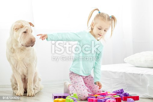 istock A small child is in the room with a dog. The concept of lifestyle, childhood, upbringing, family. 918704420
