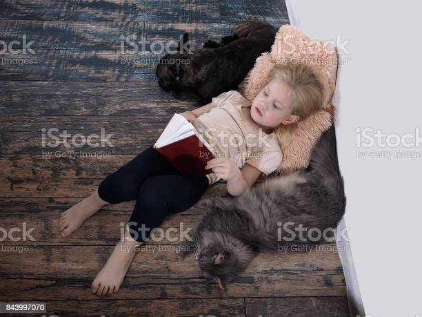Small child with a book girl lying on the floor next a cat and a dog picture id843997070?b=1&k=6&m=843997070&s=612x612&h=jyv vjrhbqgjy tpwiwsnhry3lywcpgqgqco0idmcvm=