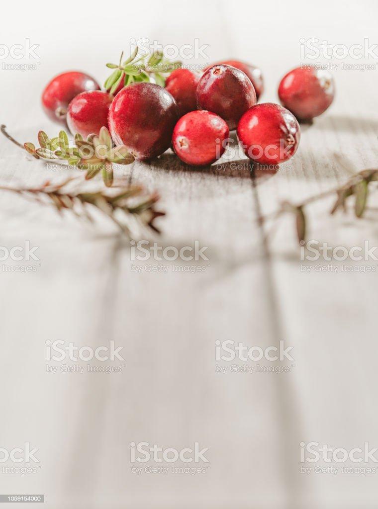 Petit fruits de noël, canneberge fraîche. - Photo