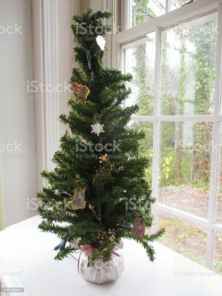 Small Christmas Tree in a Sunroom During the Daytime stock photo