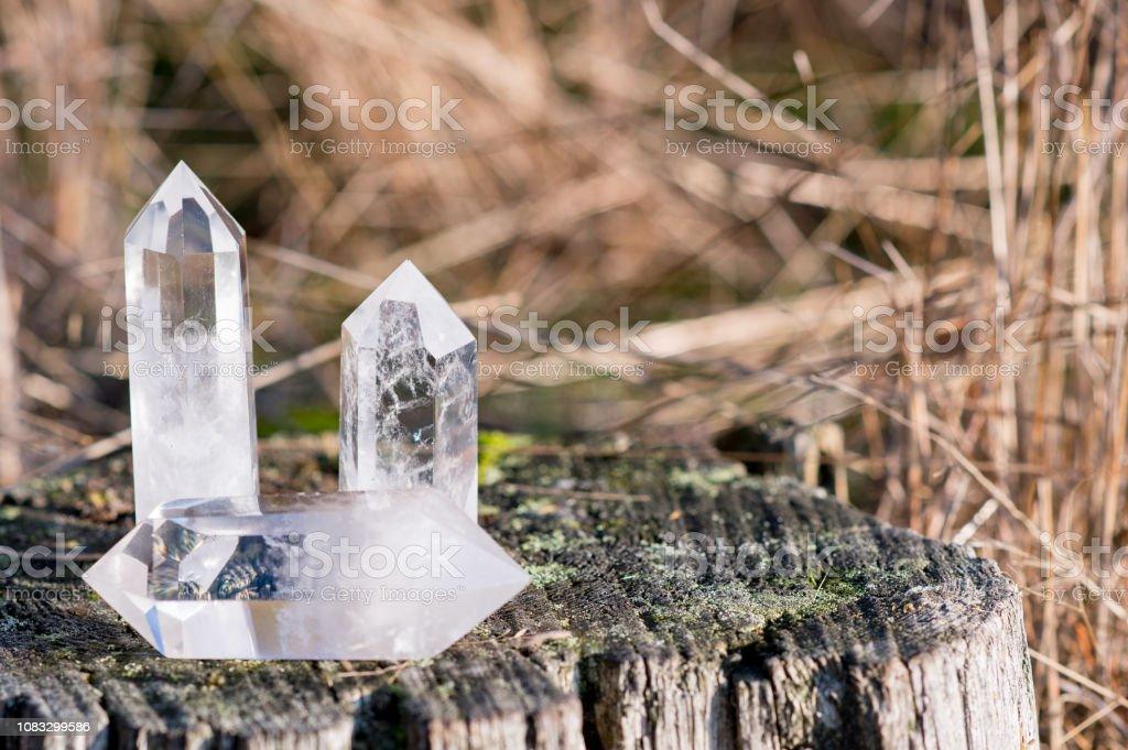 3 kleine klare Quarzkristalle, die Verlegung auf einen Baum mit Grass im Hintergrund – Foto