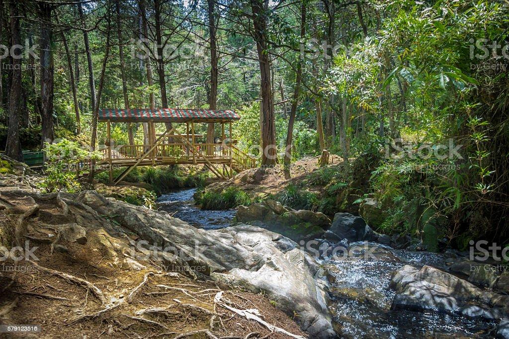Small colorful covered wooden bridge  - Parque Arvi, Medellin, Colombia stock photo