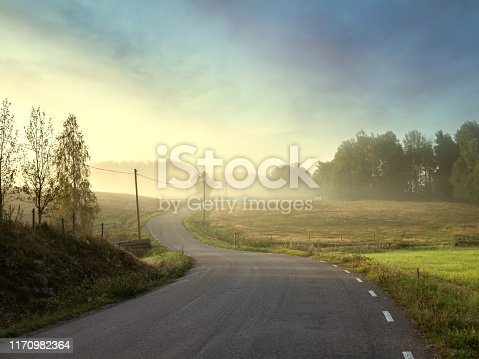 Small country road going trough beautyful landscape an early summer morning. Mist and sunrise makes beautiful light in the photograph