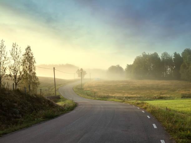 petite route de campagne auge beau paysage terrestre - suede photos et images de collection
