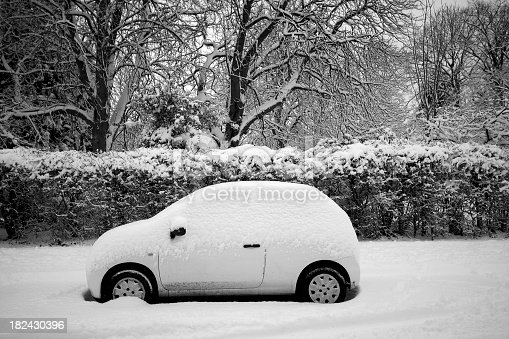 Thick snow covering the street, hedge, trees and the parked car.