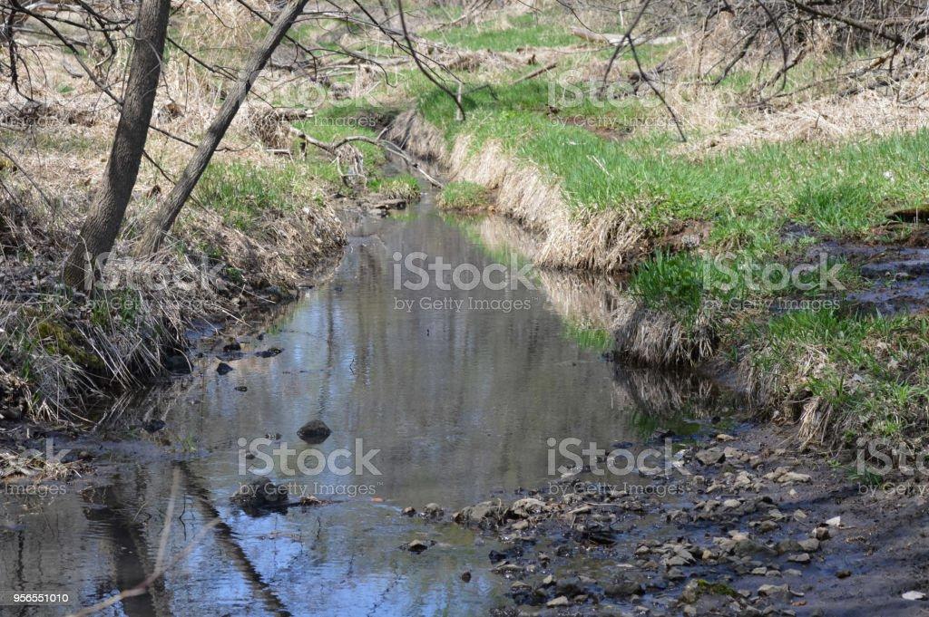 Kleiner Bach im Wald - Lizenzfrei Bach Stock-Foto