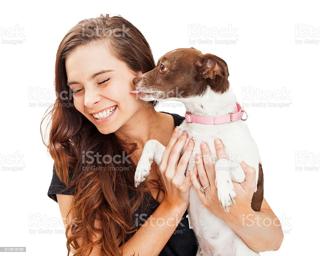 Small Dog Kissing Beautiful Young Woman stock photo