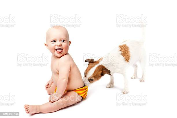 Small dog sniffing the diaper of sitting and smiling baby picture id155386734?b=1&k=6&m=155386734&s=612x612&h=2zoq6n2ngwucav0wh6m189pefzvee4uincw7wap6ltu=