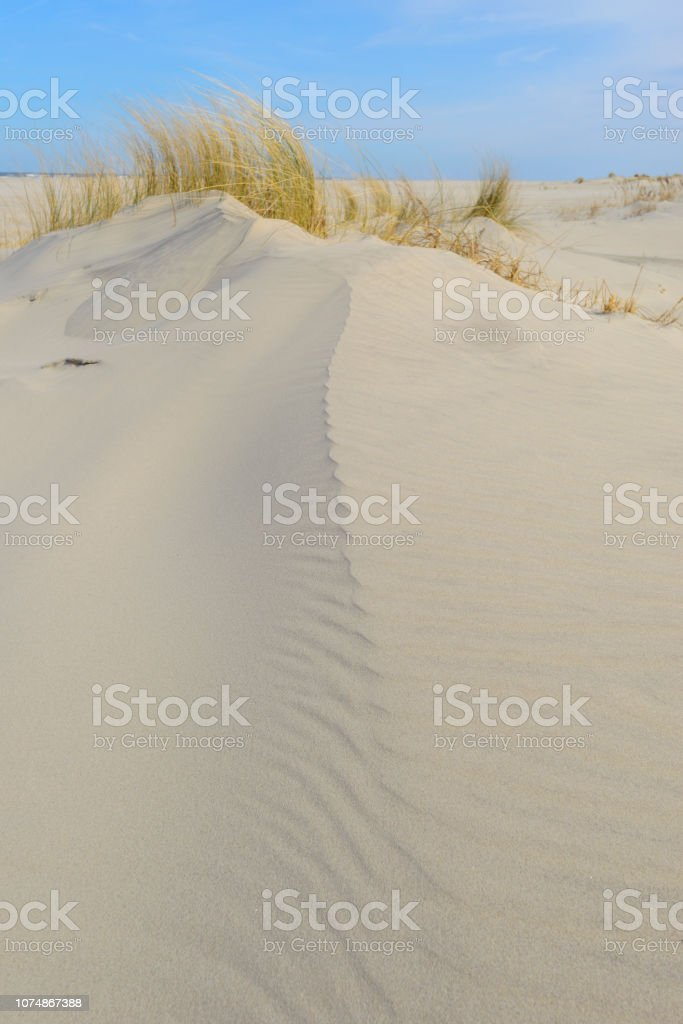 Spring Comes To Dunes >> Small Dunes At The Beach During A Beautiful Spring Day Stock Photo