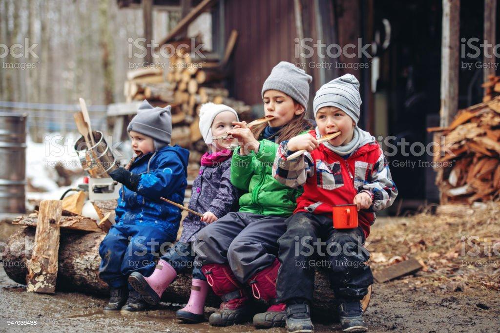 Kleiner Familienbetrieb einer Ahornsirup-Industrie – Foto