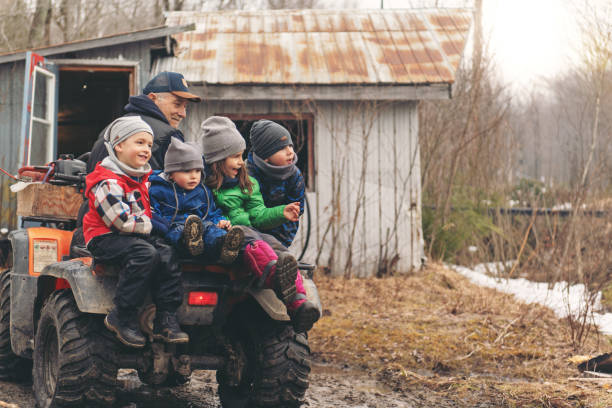 small family business of a maple syrup industry - sugar cane foto e immagini stock
