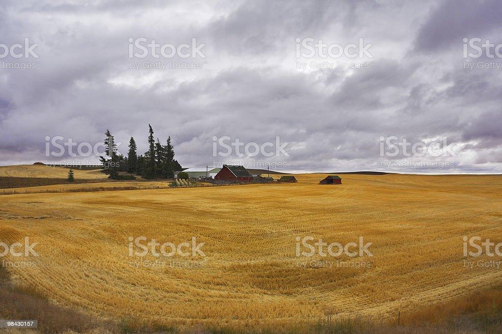Piccola fattoria nel campo del Montana foto stock royalty-free