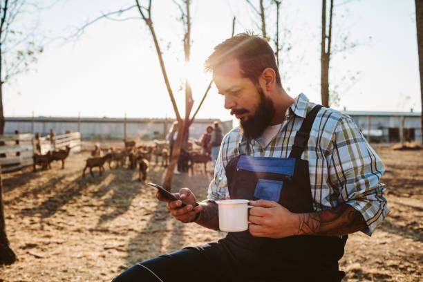 small farm owners - goat farm - coffee farmer foto e immagini stock