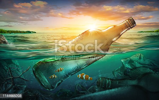 istock Small fishes in a bottle among ocean pollution. Environment concept 1144665203
