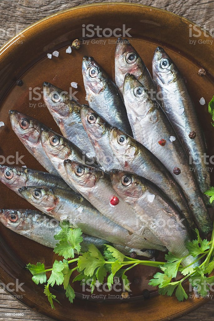 Small fishes stock photo