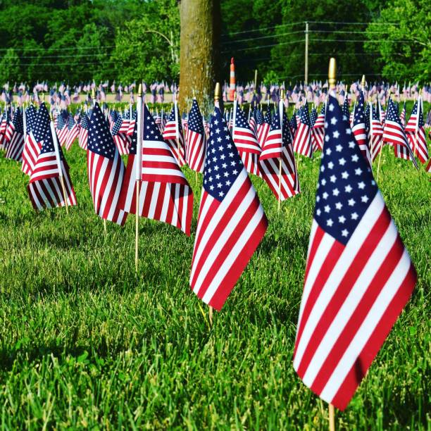 Small flags in a field stock photo