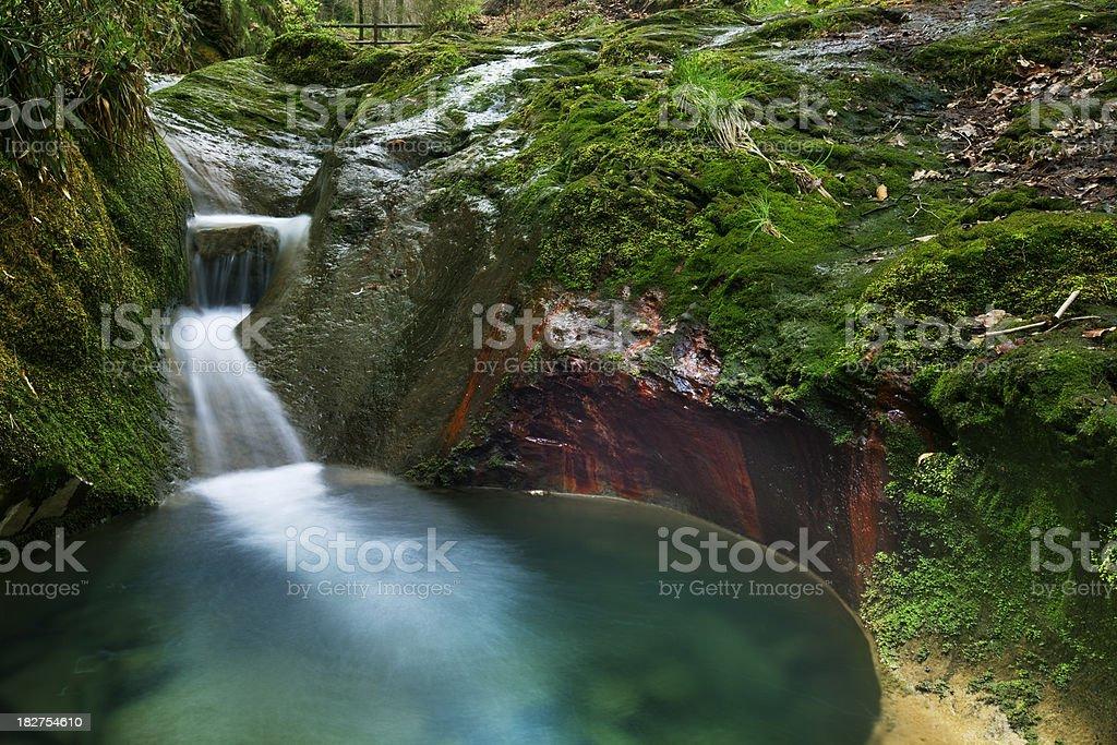 Rivière de la petite Forêt d'Ardenne, en Belgique - Photo