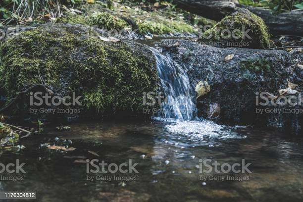 Photo of Small forest waterfall overgrown with moss