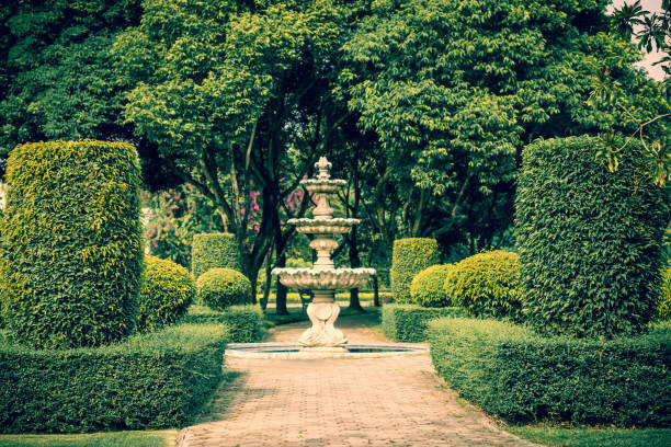 Small fountain and tropical garden green  plant decorate in Thailand stock photo