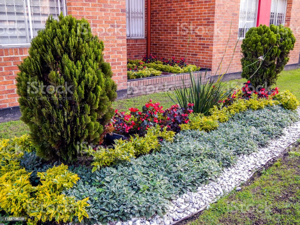 Small garden with trees flowers and bushes royalty-free stock photo