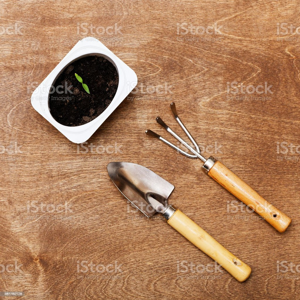 Small Gardening Tools And Little Green Sprout Stock Photo & More ...