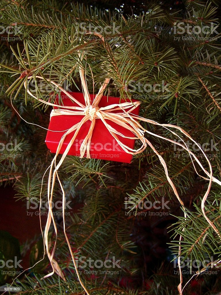 Small Gift royalty-free stock photo