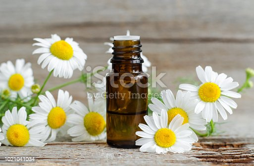 istock Small glass bottle with essential roman chamomile oil on the old wooden background. Chamomile flowers, close up. Aromatherapy, spa and herbal medicine ingredients. Copy space. 1021041034