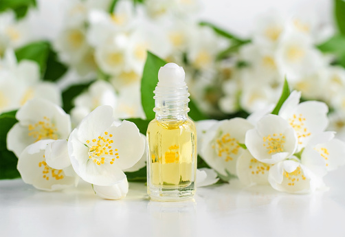 Small glass roll-on bottle with essential jasmine oil (tincture, infusion, perfume) on the white background. Jasmine flowers close up. Aromatherapy, spa and herbal medicine ingredients. Copy space.