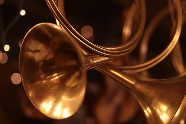 Kleine golden horn – Foto