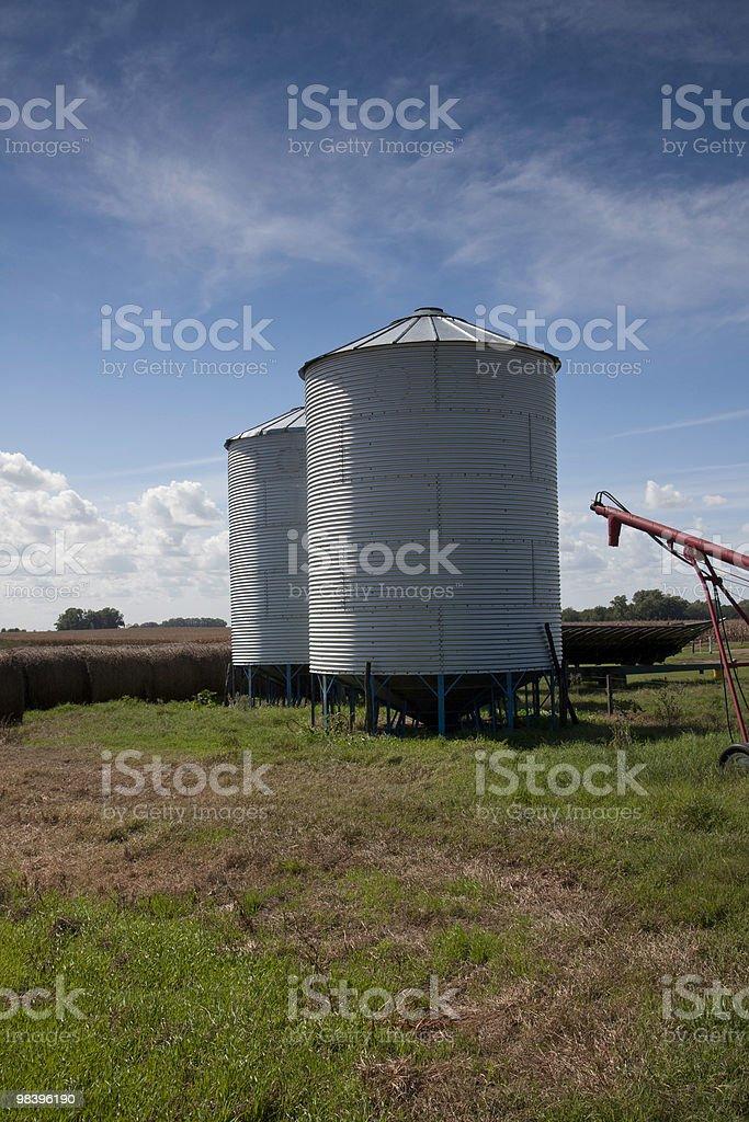 Piccolo fiore silos foto stock royalty-free