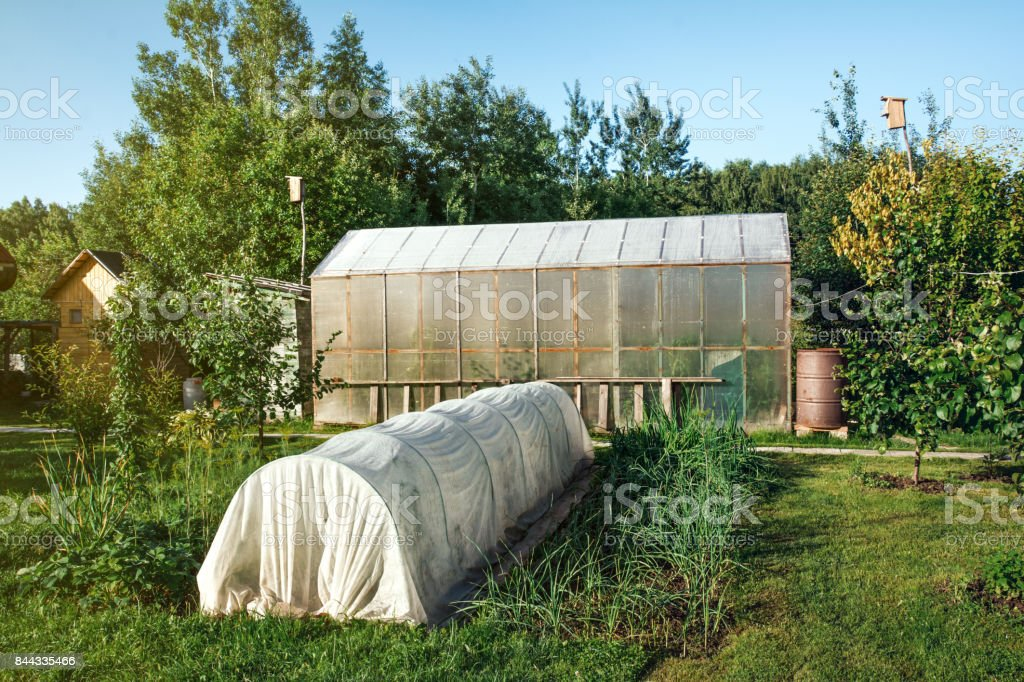 Small greenhouse in the garden stock photo