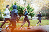 Small group of people running in the park in the autumn. Young people dressed in sportswear jogging together in morning.