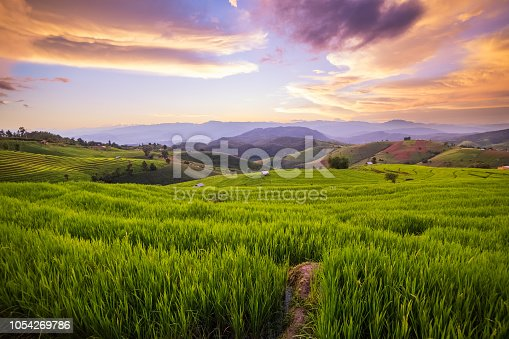 istock Small house and rice terraces field at pabongpaing village rice terraces Mae-Jam Chiang mai, Thailand 1054269786