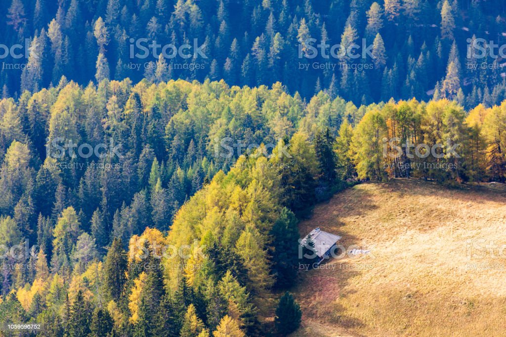 Small house by the forest stock photo