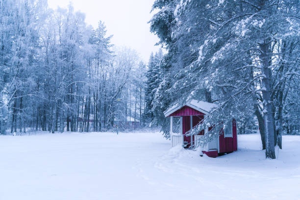 A small hut in forest in winter stock photo